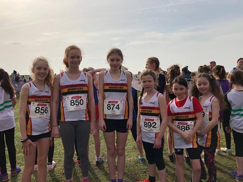 Welsh Athletics Cross Country Championships 2