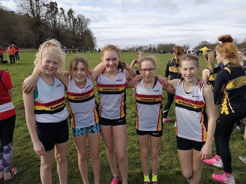 Gwent Cross Country 6