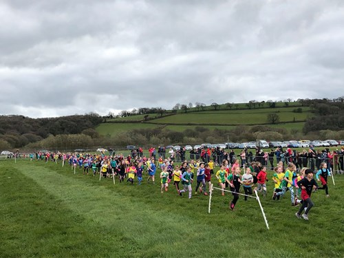 Cross Country Championships 4