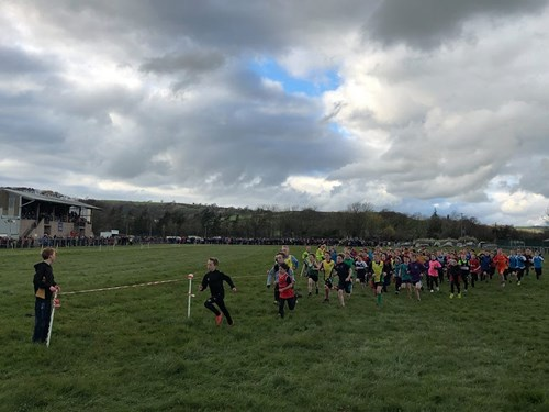 Cross Country Championships 7